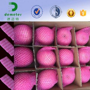 Hot Sales in America Market Food Grade Plastic Foam Sleeve Net to Protect The Fruit pictures & photos
