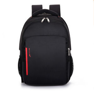 Fashion Polyester Multi-Compartment Laptop Backpack for School, Hiking, Travel pictures & photos