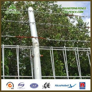Hot Dipped Galvanized / HDG Security Brc Fence / Roll Top Fence Panel for Brunei Market pictures & photos