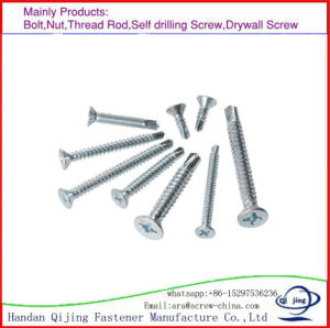 Drill Tail Screw Self Tapping Screws. pictures & photos