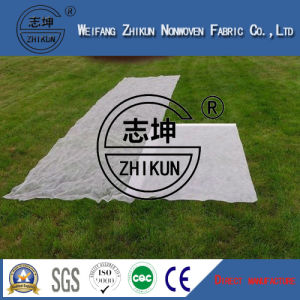 High Quality PP Nonwoven Fabric for Agriculture