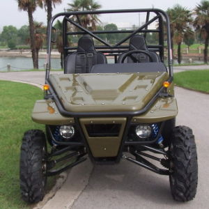 Go Kart 1100CC Dune Buggy Cart pictures & photos