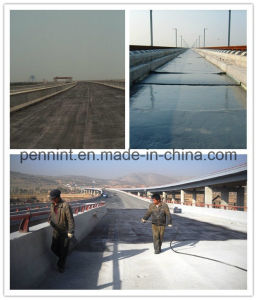 Europe/Africa/Middle East High Polymer Cement Waterproof Coating pictures & photos
