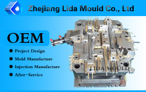 Injection Plastic Mold for Automotive Product (LIDA-E10D)