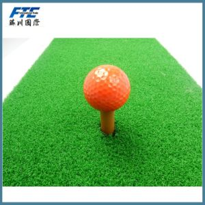Exercise Practice Driving Range Golf Ball pictures & photos