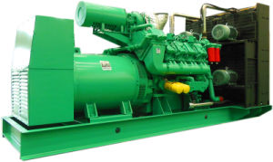 USA Googol Diesel Engine Electric Generator 1 Mw pictures & photos