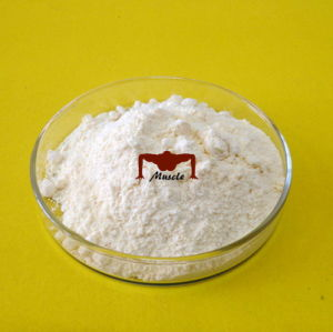 Anabolic Steroids Stanolone CAS: 521-18-6