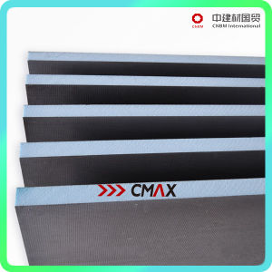 Insulation and Waterproof Tile Backer Board Cnbm Group pictures & photos