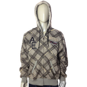 Custom Men Embroidery Fleece Hoodies Jacket pictures & photos