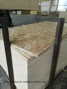 OSB Oriented Strandboard Be Used for Decoration Furniture pictures & photos