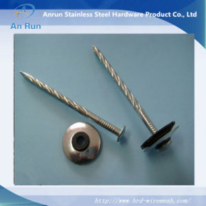 Super Quality Factory Price Twist Umbrella Roof Nail pictures & photos