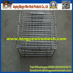 Deep Processing Disinfecting Basket Industrial Plastic Box Washing pictures & photos