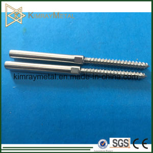 Stainless Steel Leg Swage Screw pictures & photos