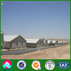 Prefabricated China Steel Structure Poultry Farms pictures & photos