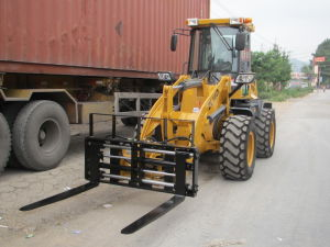 New Design Forklift Loader pictures & photos