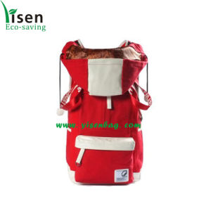 Hiking Backpack, Travel Backpack Bag (YSBP03-0108) pictures & photos