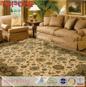 Top Selling Wholesale Chenille Carpet (T110) pictures & photos