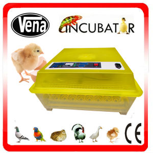 Small Fully Automatic Poultry Egg Incubator pictures & photos