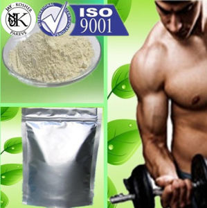 Muscle Building Anabolic Steroid Powder Testosterone Phenylpropionate with Safe Shipping
