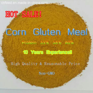 Corn Gluten Meal for Animal Feed (58%protein)