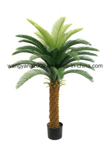 Artificial Fake Synthetic Cycas Potted Plants Bonsai pictures & photos