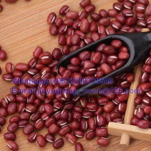 New Crop Azuki Bean Top Quality pictures & photos