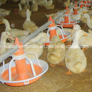 Poultry Equipment for Duck and Goose pictures & photos