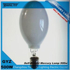 Gyz500W Self-Ballasted Pressure Mercury Lamps