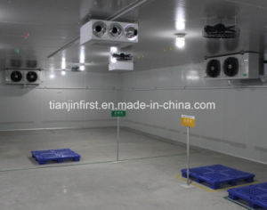 2017 New Product and Best Price Freezer Cold Room Used pictures & photos