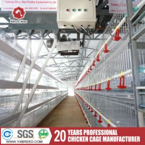 Egg Laying Hens Chicken Cage for Sale pictures & photos