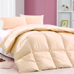 Wholesale Cheap Goose Feather Duvet Hotel Bedding Comforter Set pictures & photos