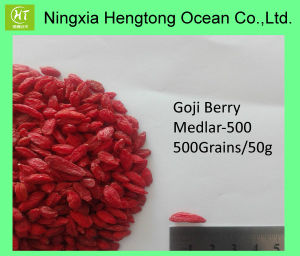 Free Samples Goji Berry--Ningxia Wolfberry