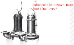Submersible Wastewater&Sewage Pump pictures & photos