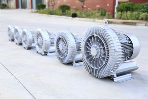 The Ce Approved Ring Blower of China pictures & photos