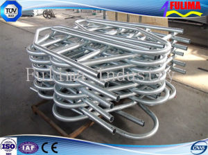 Customized Galvanized Cattle Panel Yards (FLM-F-007) pictures & photos