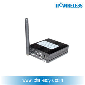 2.4GHz Digital Wireless Audio Transmitter Receiver (WT02) pictures & photos