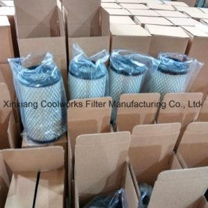 P821575 Donaldson Air Filter pictures & photos