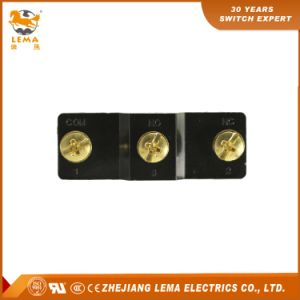 Factory Supply Lz15-Gw49-B Short Hinge Cross Roller Lever Micro Switch pictures & photos