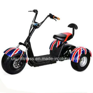 Professional Manufacturer of Tricycle pictures & photos
