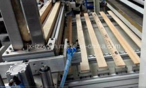 High Speed Pad Printing Machine for Rulers pictures & photos
