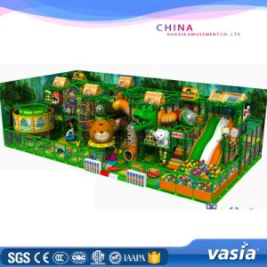 Popular Jungle Play Park Amusement Playground pictures & photos