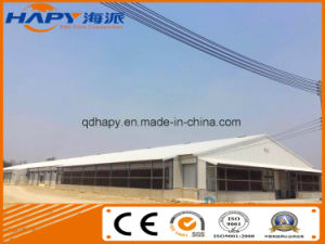 Chicken Poultry Farm Shed with Automatic Equipment for Broilers pictures & photos