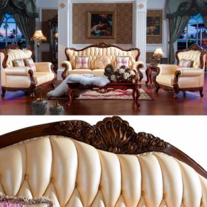 Leather Sofa with Wooden Sofa Frame and Table (D508)