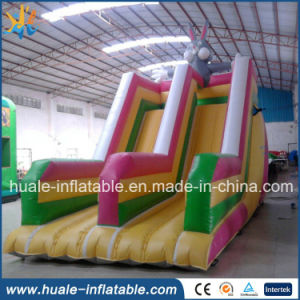 Professional Supplier Colorful Inflatable Slide for Adult with Good Price