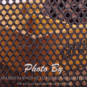 Ground Reinforcement Plastic Mesh HDPE pictures & photos