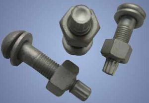 Tc Bolts Carbon Steel All Grade pictures & photos