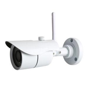 CCTV Camera Security Surveillance Indoo Outdoor IP Camera pictures & photos
