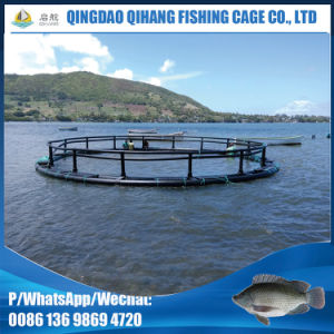 Anti-Windstorm Fish Machine Breeding Equipment Fishing Cage pictures & photos