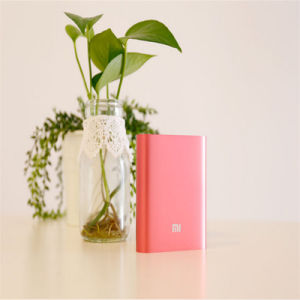 6000mAh Two USB Power Bank Rechargeable Battery for Mobile Phone pictures & photos