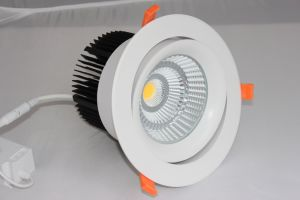 3years Warranty 45W CREE COB LED Downlight pictures & photos